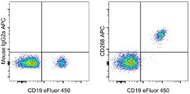 CD268 (BAFF Receptor) Antibody in Flow Cytometry (Flow)