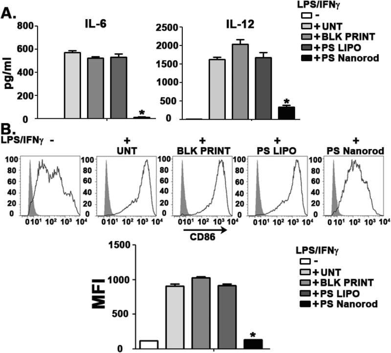 CD86 (B7-2) Antibody