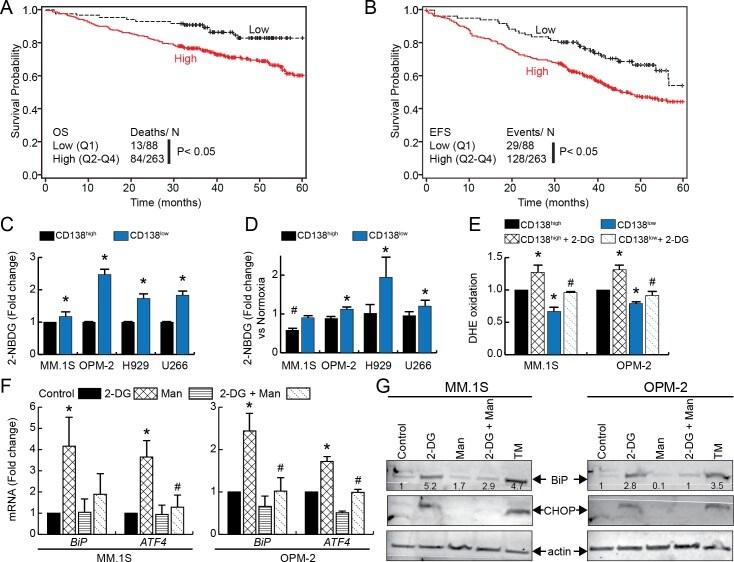CD138 (Syndecan-1) Antibody in Flow Cytometry (Flow)