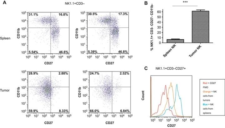 CD27 Antibody