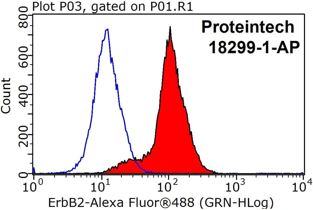 HER2/ErbB2 Antibody in Flow Cytometry (Flow)