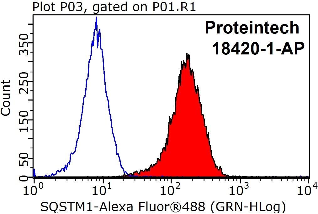 P62/SQSTM1 Antibody in Flow Cytometry (Flow)