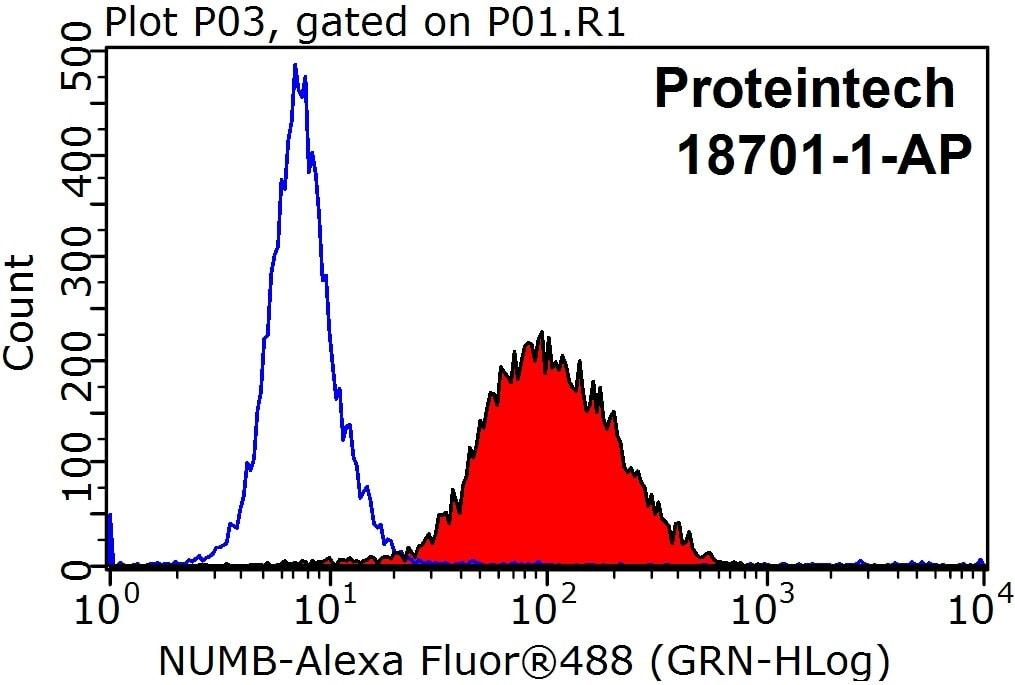 NUMB Antibody in Flow Cytometry (Flow)