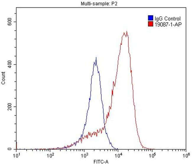 BMPR2 Antibody in Flow Cytometry (Flow)