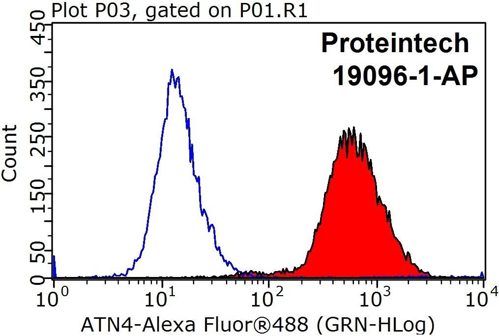 ACTN4 Antibody in Flow Cytometry (Flow)