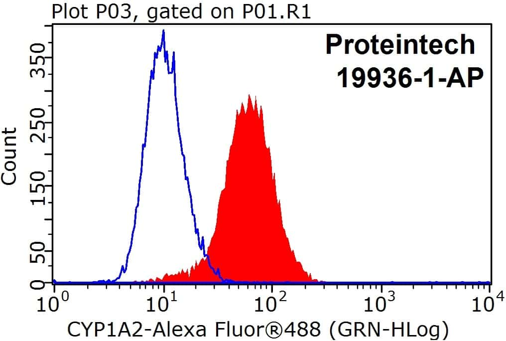 CYP1A2 Antibody in Flow Cytometry (Flow)
