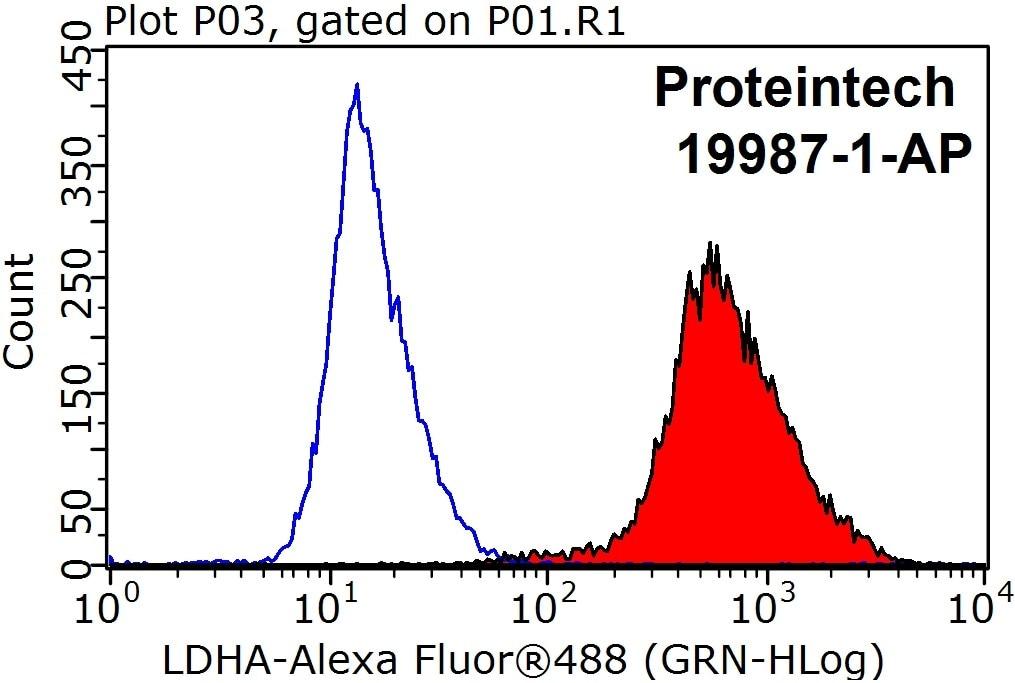 LDHA Antibody in Flow Cytometry (Flow)