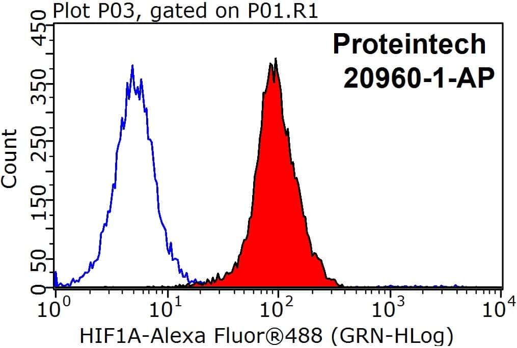 HIF1a Antibody in Flow Cytometry (Flow)
