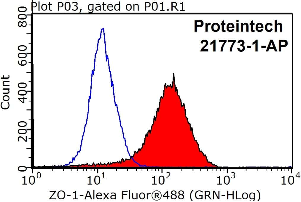 ZO-1 Antibody in Flow Cytometry (Flow)