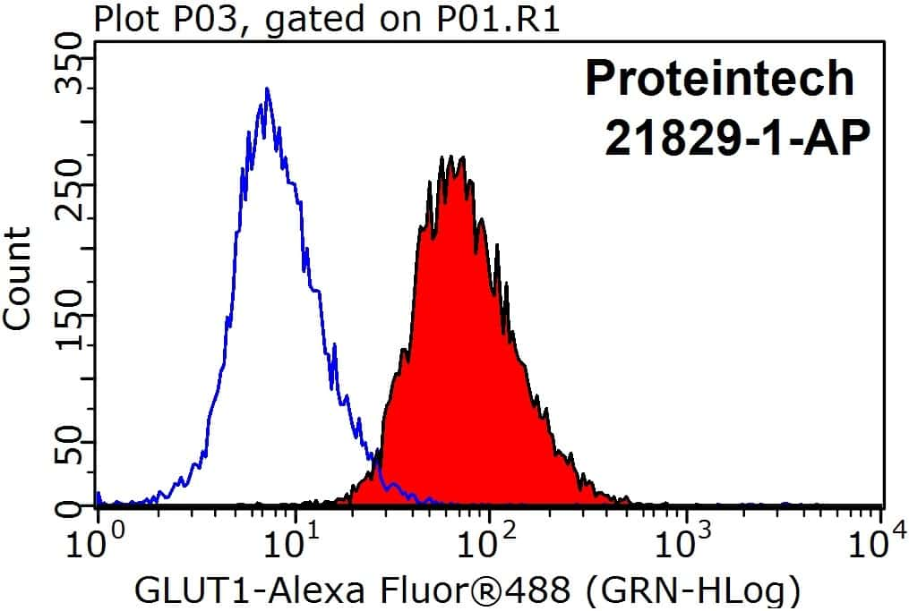 GLUT1 Antibody in Flow Cytometry (Flow)