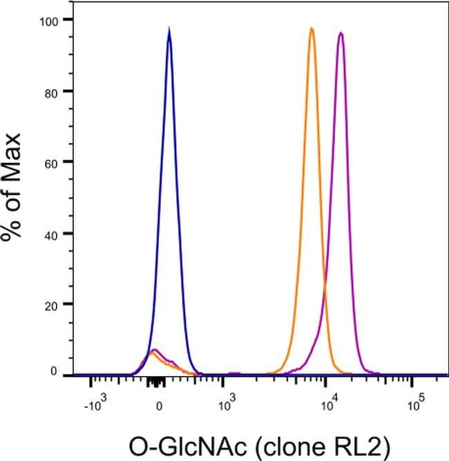 O-linked N-acetylglucosamine (O-GlcNAc) Antibody in Cell Treatment