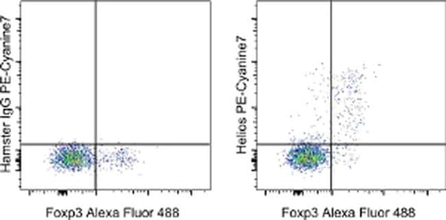 HELIOS Antibody in Flow Cytometry (Flow)