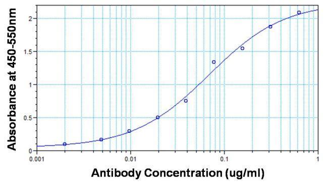 Rabbit IgG (H+L) Secondary Antibody in ELISA (ELISA)