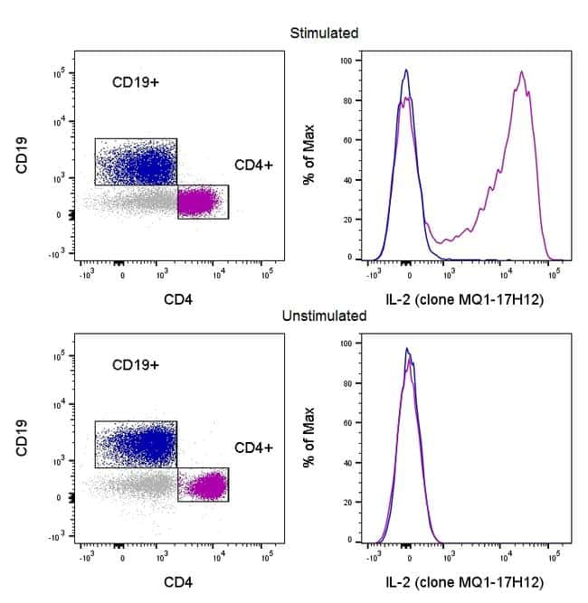 IL-2 Antibody in Cell treatment