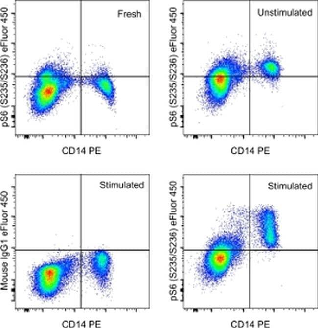 Phospho-S6 (Ser235, Ser236) Antibody in Flow Cytometry (Flow)