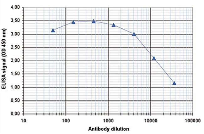Tri-Methyl-Histone H3 (Lys4) Antibody in ELISA (ELISA)
