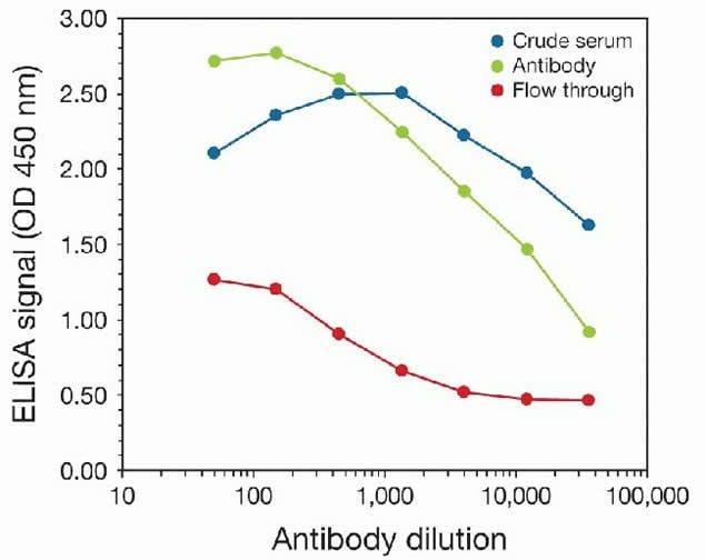 Tri-Methyl-Histone H3 (Lys9) Antibody in peptide-ELISA (pep-ELISA)