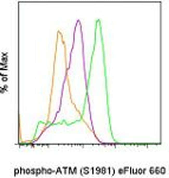 Phospho-ATM (Ser1981) Antibody in Flow Cytometry (Flow)