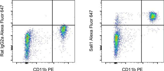 Sall1 Antibody in Flow Cytometry (Flow)