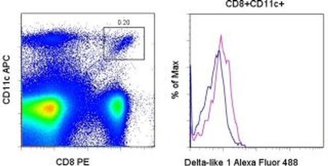 DLL1 (delta-like 1) Antibody in Flow Cytometry (Flow)