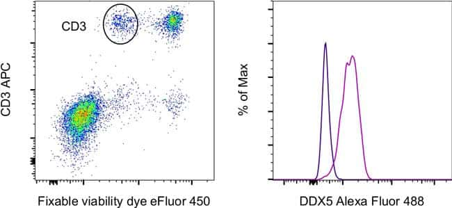 DDX5 Antibody in Flow Cytometry (Flow)