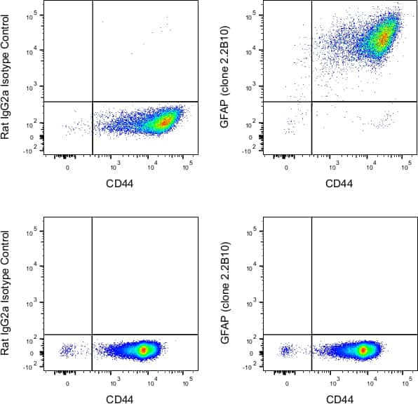 GFAP Antibody in Relative expression