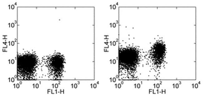 CD197 (CCR7) Antibody in Flow Cytometry (Flow)