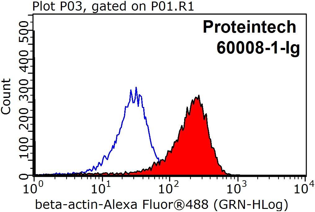 beta Actin Antibody in Flow Cytometry (Flow)