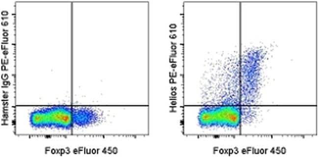 HELIOS Antibody in Flow Cytometry (Flow)