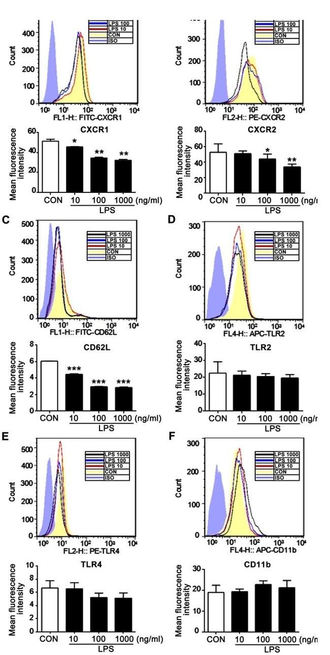 CD182 (CXCR2) Antibody (14-1829-82)
