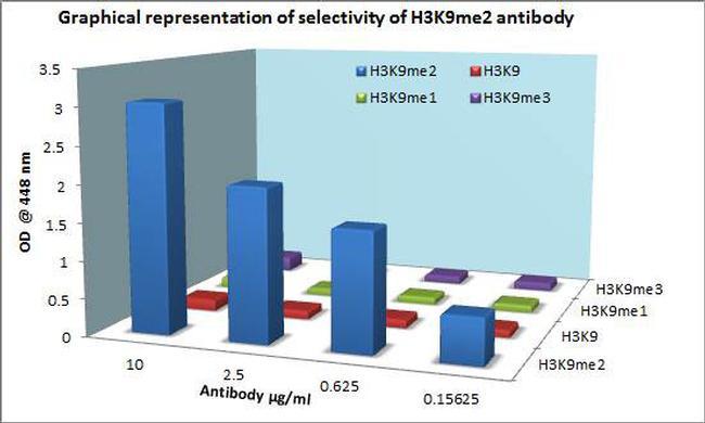 Di-Methyl-Histone H3 (Lys9) Antibody in ELISA (ELISA)