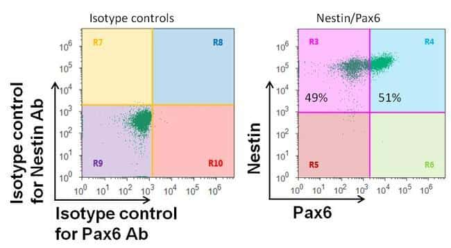 Mouse IgG (H+L) Highly Cross-Adsorbed Secondary Antibody in Flow Cytometry (Flow)