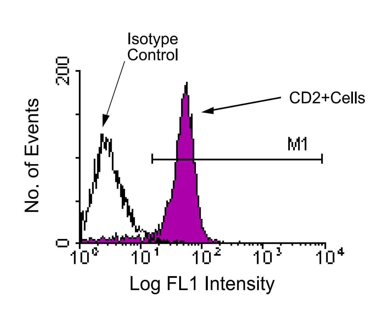 CD2 Antibody in Flow Cytometry (Flow)