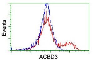 ACBD3 Antibody in Flow Cytometry (Flow)