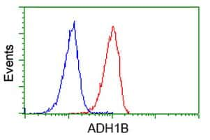 ADH1B Antibody in Flow Cytometry (Flow)