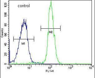 ADPRHL2 Antibody in Flow Cytometry (Flow)
