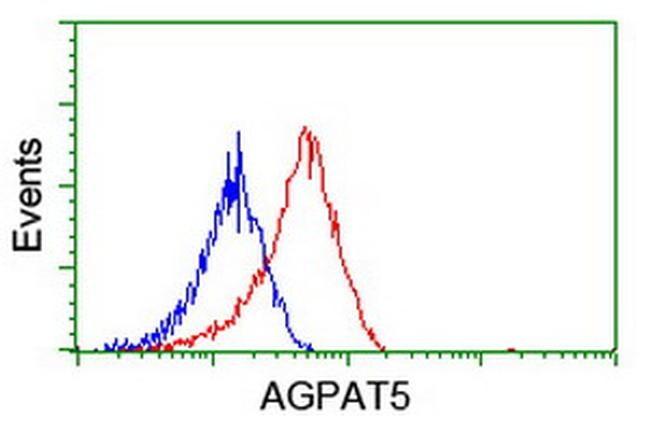 AGPAT5 Antibody in Flow Cytometry (Flow)