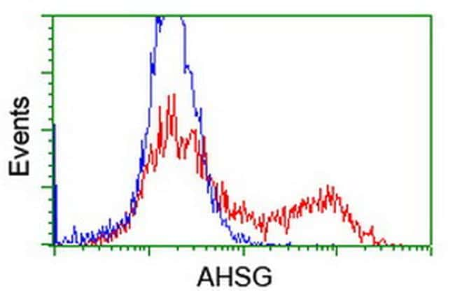 AHSG Antibody in Flow Cytometry (Flow)