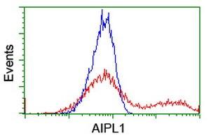 AIPL1 Antibody in Flow Cytometry (Flow)