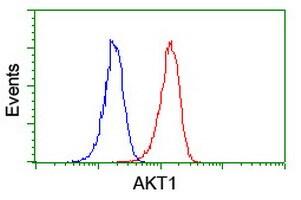 AKT1 Antibody in Flow Cytometry (Flow)
