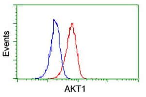 AKT1 Antibody in Flow Cytometry (Flow)