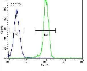 AKT2 Antibody in Flow Cytometry (Flow)