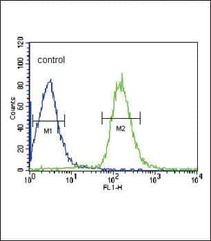 Human Serum Albumin Antibody in Flow Cytometry (Flow)