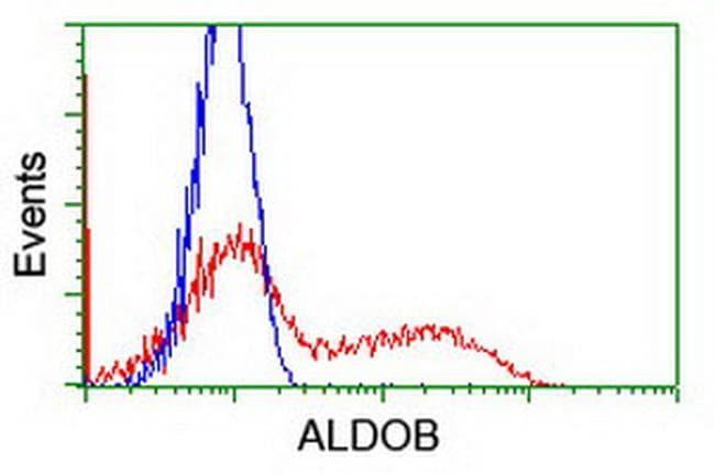 ALDOB Antibody in Flow Cytometry (Flow)