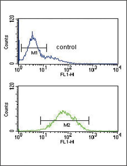 ANKH Antibody in Flow Cytometry (Flow)