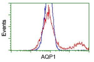AQP1 Antibody in Flow Cytometry (Flow)
