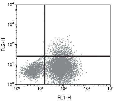 IL-10 Antibody in Flow Cytometry (Flow)