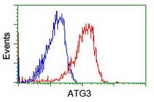 ATG3 Antibody in Flow Cytometry (Flow)