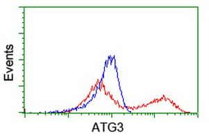 ATG3 Antibody in Flow Cytometry (Flow)