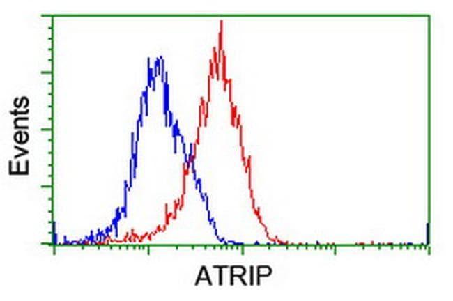 ATRIP Antibody in Flow Cytometry (Flow)
